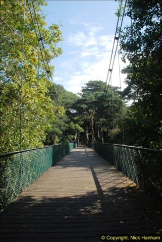 2014-08-20 Bomo. Suspension Bridge.  (12)