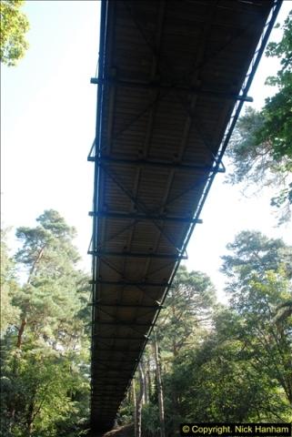 2014-08-20 Bomo. Suspension Bridge.  (9)