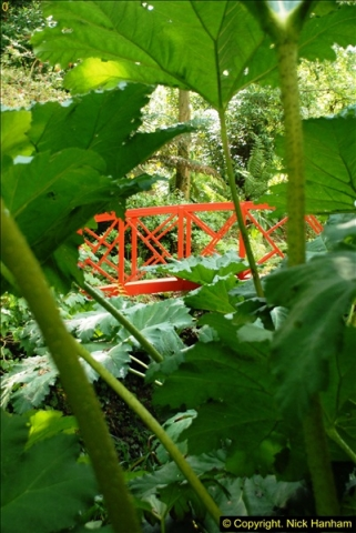 2014-08-22 Abbotsbury Tropical Gardens, Abbotsbury, Dorset.  (109)