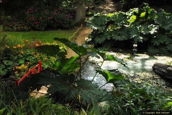 2014-08-22 Abbotsbury Tropical Gardens, Abbotsbury, Dorset.  (119)