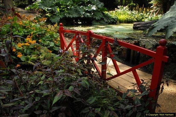 2014-08-22 Abbotsbury Tropical Gardens, Abbotsbury, Dorset.  (122)