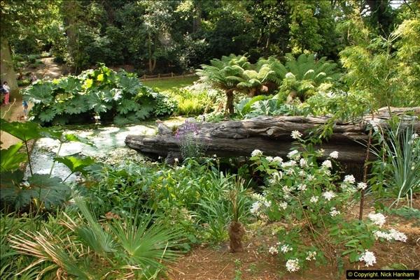 2014-08-22 Abbotsbury Tropical Gardens, Abbotsbury, Dorset.  (124)