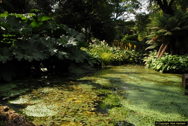 2014-08-22 Abbotsbury Tropical Gardens, Abbotsbury, Dorset.  (128)