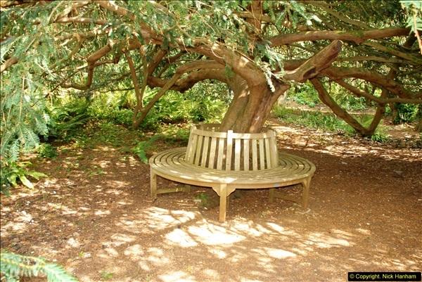 2014-08-22 Abbotsbury Tropical Gardens, Abbotsbury, Dorset.  (129)