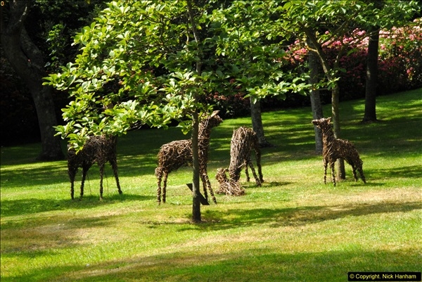 2014-08-22 Abbotsbury Tropical Gardens, Abbotsbury, Dorset.  (134)