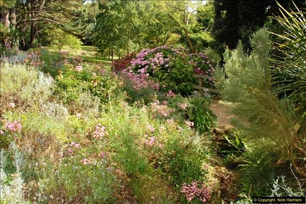 2014-08-22 Abbotsbury Tropical Gardens, Abbotsbury, Dorset.  (149)