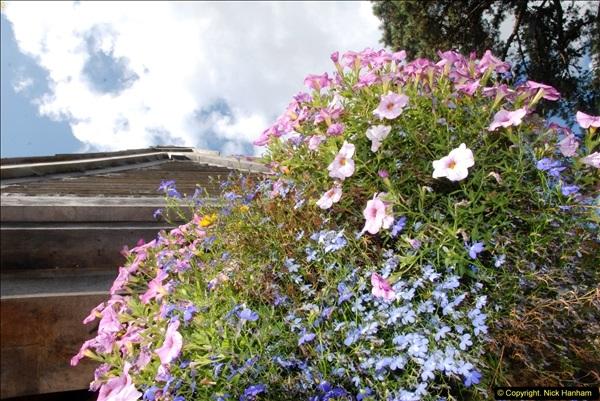 2014-08-22 Abbotsbury Tropical Gardens, Abbotsbury, Dorset.  (150)