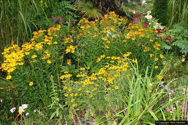2014-08-22 Abbotsbury Tropical Gardens, Abbotsbury, Dorset.  (164)