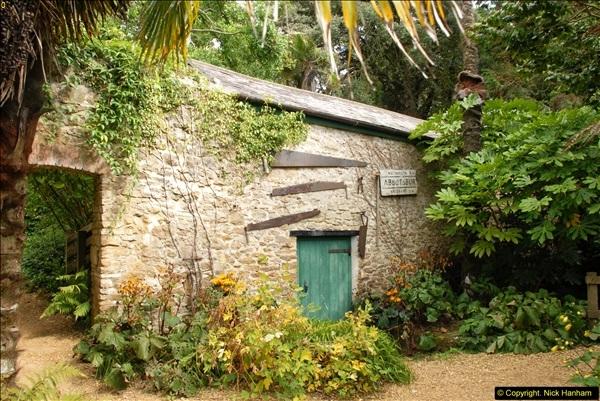 2014-08-22 Abbotsbury Tropical Gardens, Abbotsbury, Dorset.  (166)