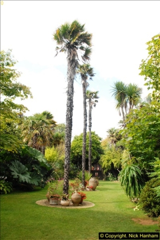 2014-08-22 Abbotsbury Tropical Gardens, Abbotsbury, Dorset.  (172)