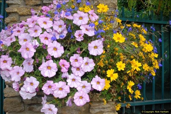 2014-08-22 Abbotsbury Tropical Gardens, Abbotsbury, Dorset.  (178)