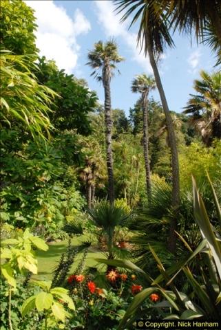 2014-08-22 Abbotsbury Tropical Gardens, Abbotsbury, Dorset.  (179)