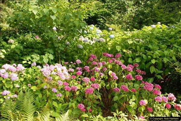 2014-08-22 Abbotsbury Tropical Gardens, Abbotsbury, Dorset.  (49)