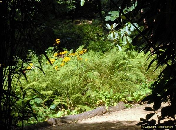 2014-08-22 Abbotsbury Tropical Gardens, Abbotsbury, Dorset.  (70)