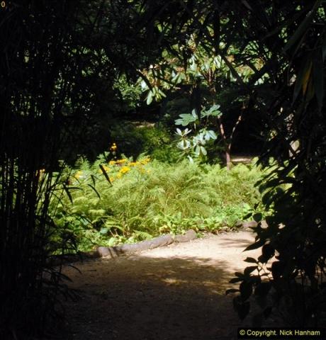 2014-08-22 Abbotsbury Tropical Gardens, Abbotsbury, Dorset.  (71)