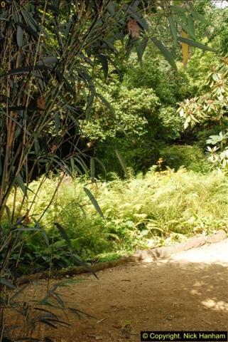 2014-08-22 Abbotsbury Tropical Gardens, Abbotsbury, Dorset.  (72)