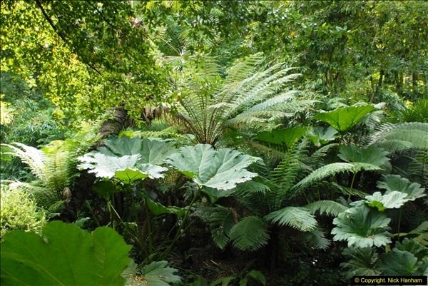 2014-08-22 Abbotsbury Tropical Gardens, Abbotsbury, Dorset.  (78)