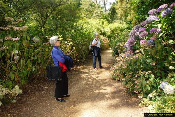 2014-08-22 Abbotsbury Tropical Gardens, Abbotsbury, Dorset.  (80)
