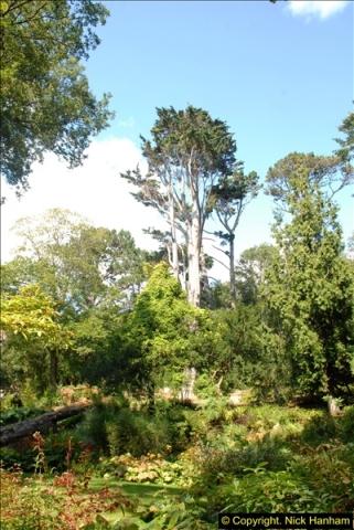 2014-08-22 Abbotsbury Tropical Gardens, Abbotsbury, Dorset.  (93)