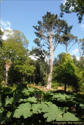 2014-08-22 Abbotsbury Tropical Gardens, Abbotsbury, Dorset.  (96)