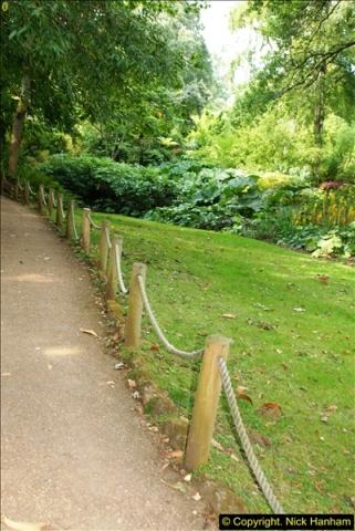 2014-08-22 Abbotsbury Tropical Gardens, Abbotsbury, Dorset.  (97)