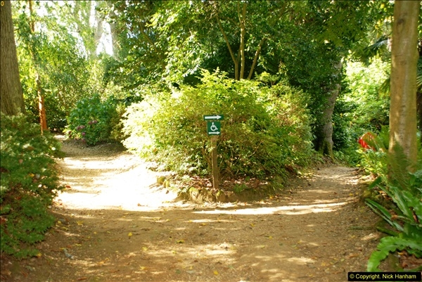 2014-08-22 Abbotsbury Tropical Gardens, Abbotsbury, Dorset.  (98)