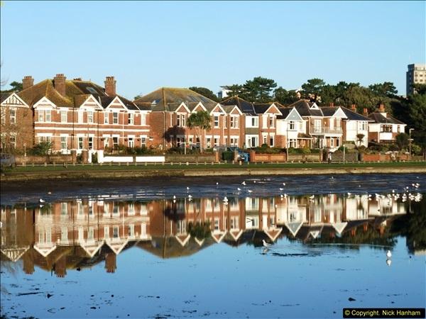 2014-12-08 Poole. Park, Poole, Dorset.  (11)