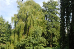 2014-08-11 The Vyne (NT) Basingstoke, Hampshire.  (62)