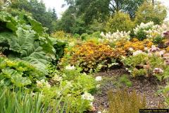 2014-08-19 Hillier Gardens, Romsey, Hampshire.  (122)