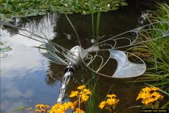 2014-08-19 Hillier Gardens, Romsey, Hampshire.  (138)