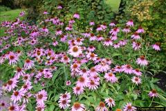2014-08-19 Hillier Gardens, Romsey, Hampshire.  (148)