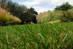 2014-08-19 Hillier Gardens, Romsey, Hampshire.  (161)