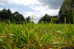 2014-08-19 Hillier Gardens, Romsey, Hampshire.  (178)