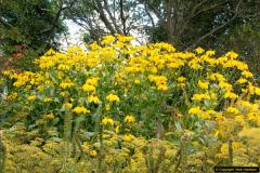 2014-08-19 Hillier Gardens, Romsey, Hampshire.  (34)