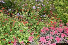 2014-08-19 Hillier Gardens, Romsey, Hampshire.  (57)
