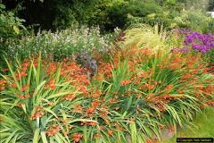 2014-08-19 Hillier Gardens, Romsey, Hampshire.  (72)