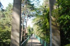2014-08-20 Bomo. Suspension Bridge.  (18)