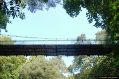 2014-08-20 Bomo. Suspension Bridge.  (8)