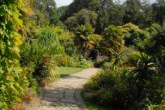 2014-08-22 Abbotsbury Tropical Gardens, Abbotsbury, Dorset.  (9)