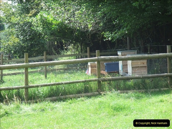 2012-08-17 Hughenden ( Disraeli's House), High Wycombe, Buckinghamshire.  (22)