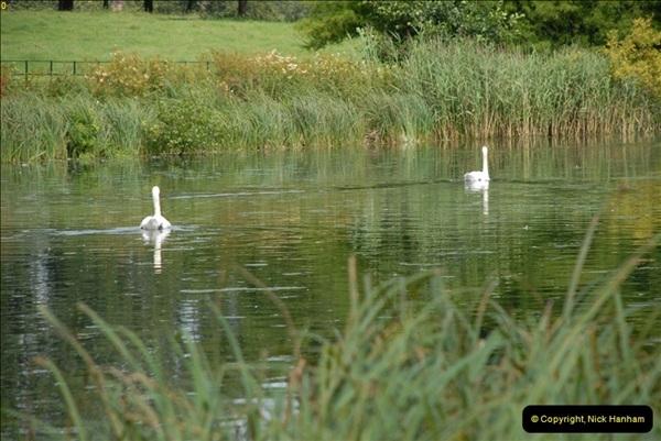 2012-08-19 The Vyne Nr. Basingstoke, Hampshire.  (8)