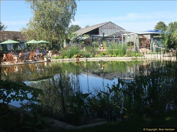 2013-09-05 Holme Garden Centre, Nr. Wareham, Dorset. (1)