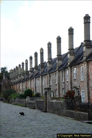 2013-11-14 Wells, Somerset.  (22)