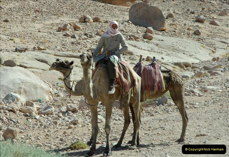 2011-11-11 Sharm El Sheikh & St. Catherine's Monastery, Egypt.   (31)
