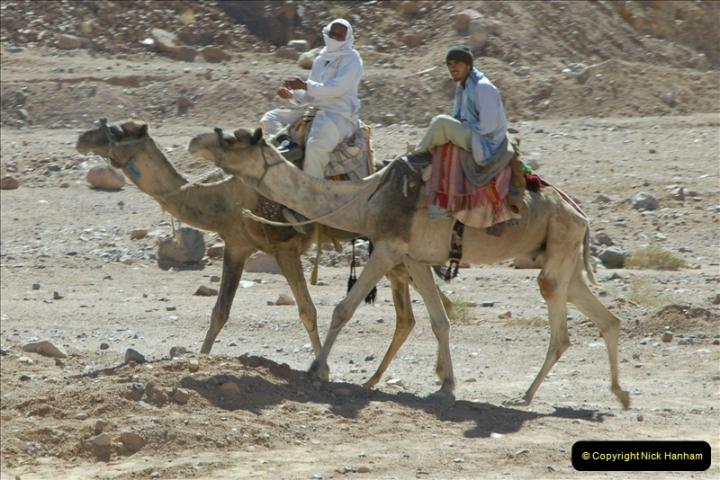 2011-11-11 Sharm El Sheikh & St. Catherine's Monastery, Egypt.   (30)