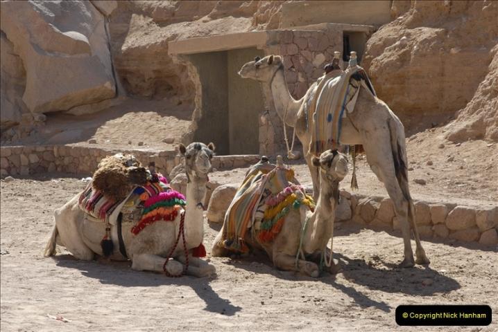 2011-11-11 Sharm El Sheikh & St. Catherine's Monastery, Egypt.   (36)