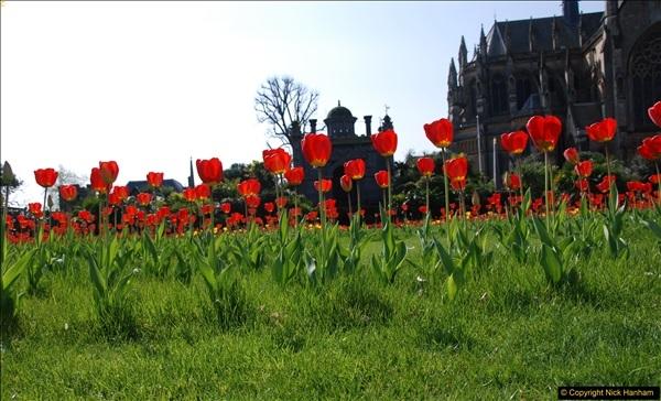 2017-04-06 Arundel Castle, Arundel, Sussex.  (64)064