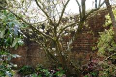 2017-04-06 Arundel Castle, Arundel, Sussex.  (132)141