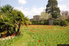 2017-04-06 Arundel Castle, Arundel, Sussex.  (136)145