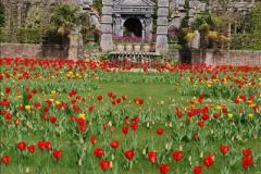2017-04-06 Arundel Castle, Arundel, Sussex.  (146)155